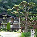 Voyage au japon - jour #11 - une route mythique et j'arrive!