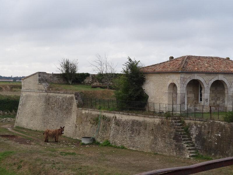 SMR Citadelle 1-2