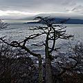 Fidalgo Island