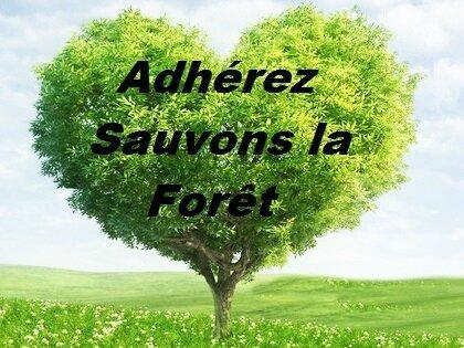 arbre-coeur1