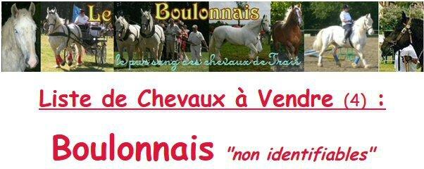 Bannière Liste de Boulonnais non identifiables à vendre