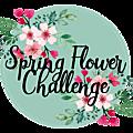Spring flower challenge - evolution