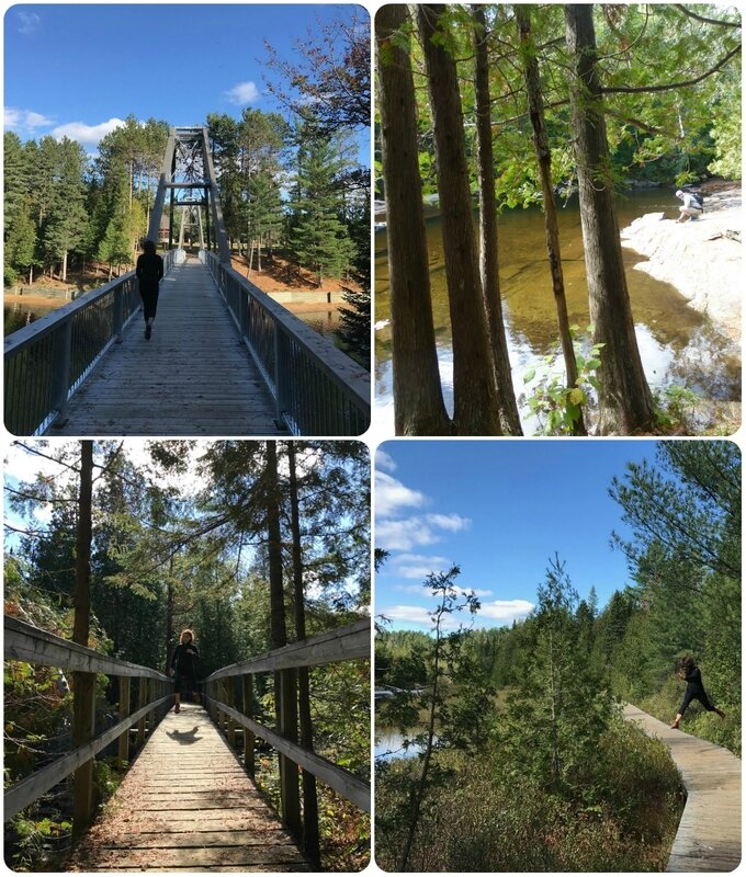 parcmauricie5