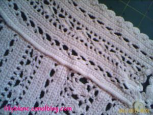 Blouse au crochet2