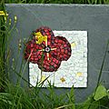 tableau coquelicot