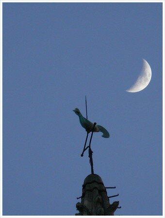 lune_et_coq_eglise