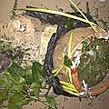 Le plus grand marabout africain serieux honnete et efficace professeur dassih du monde,vrai marabout voyant amanveba a paris e