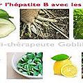 Comment traiter l'hépatite b avec les plantes
