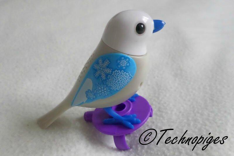 Digibird5