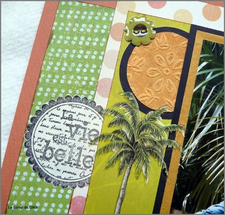 page tropicale 2