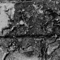 Matieres (écorchée vive)_3751
