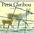 Petit caribou
