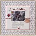 10 - 200311 - L'orchidée
