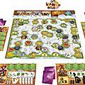 Boutique jeux de société - Pontivy - morbihan - ludis factory - via nebula plateau