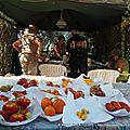 Néoules En Fleurs - Jury tomates anciennes 2011 (01)