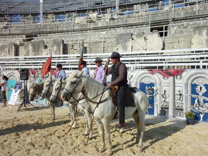 Arènes, chevaux et écuyers 23-07-2013 011