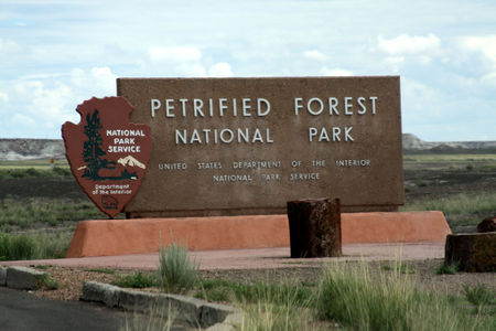 Petrified_Forest_11