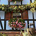 25/11/14 : wingersheim, le village