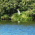 Balade au Lac 161018