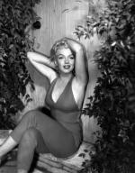 1954-PalmSprings-HarryCrocker_home-by_ted_baron-red-011-1