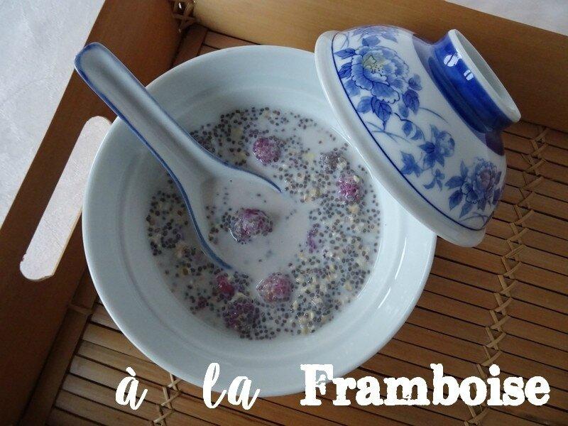 porridge-chia-avoine-framboises