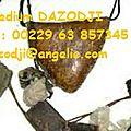 Amulettes porte bonheur ,talisman et savon du grand maître marabout dazodji d'afrique
