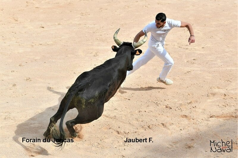 ISTRES 18