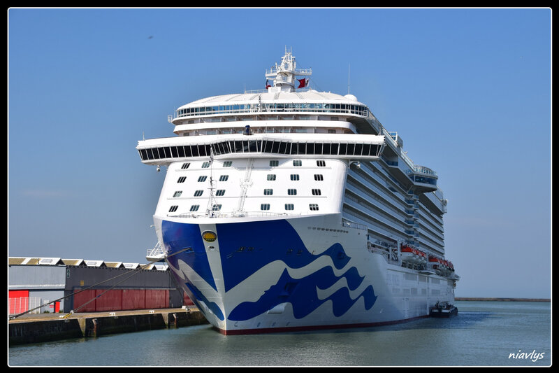royal princess 1