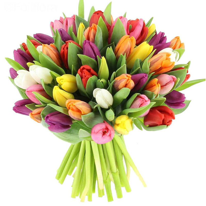 bouquet-tulipes