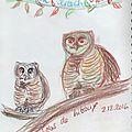 1202_owls