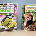 L'indispensable guide des oiseaux / des empreintes animales (belin)