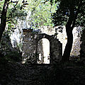 IMG_3538