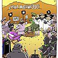 Chaambiwood
