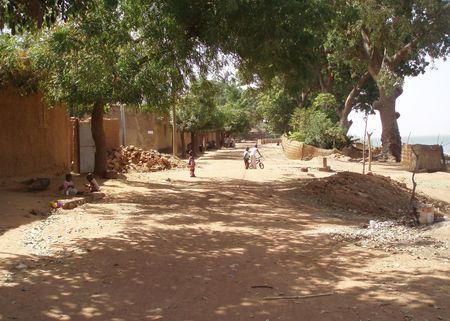 rue ombragée SÉGOU Mali