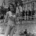 Bb cannes 1953