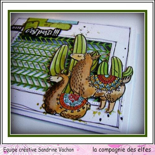 Sandrine VACHON juillet DT LCDE (2)
