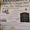 0955 2014-02-09 ROQUEBRUN MIMOSAS