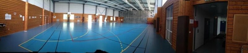 photo gymnase lyon 8