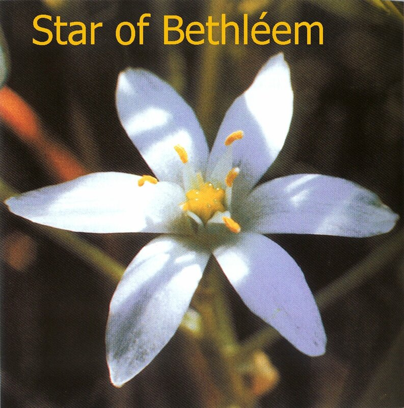 Star of Bethléem