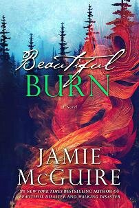 Beautiful Burn Official Cover