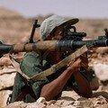 صور لتداريب و اسلحة جيشنا المغوار