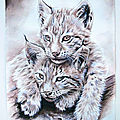 2 chatons lynx jeu - Ghislane Letourneur-BD