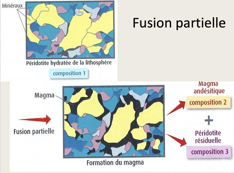 photo fusion