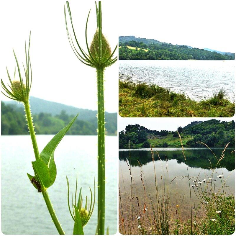 lac mondely3