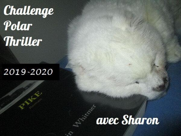 Challenge Thrillers et Polars 2019/2020