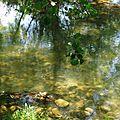 Arros Ricaud 14061622