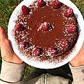 gateau au chocolat et framboises 021