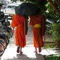 Novices, Luang prabang