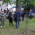 Vide-greniers-leffonds-2016 (16)