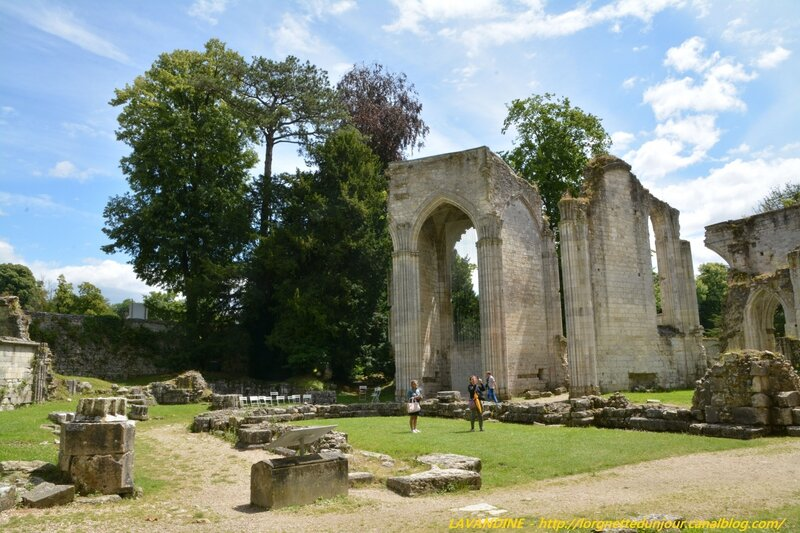6 jumieges 13 07 16 (25)
